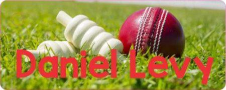 Cricket ball & wickets on grass