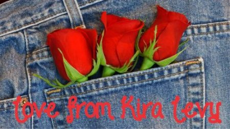 Denim red roses