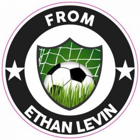 Soccer Badge 2